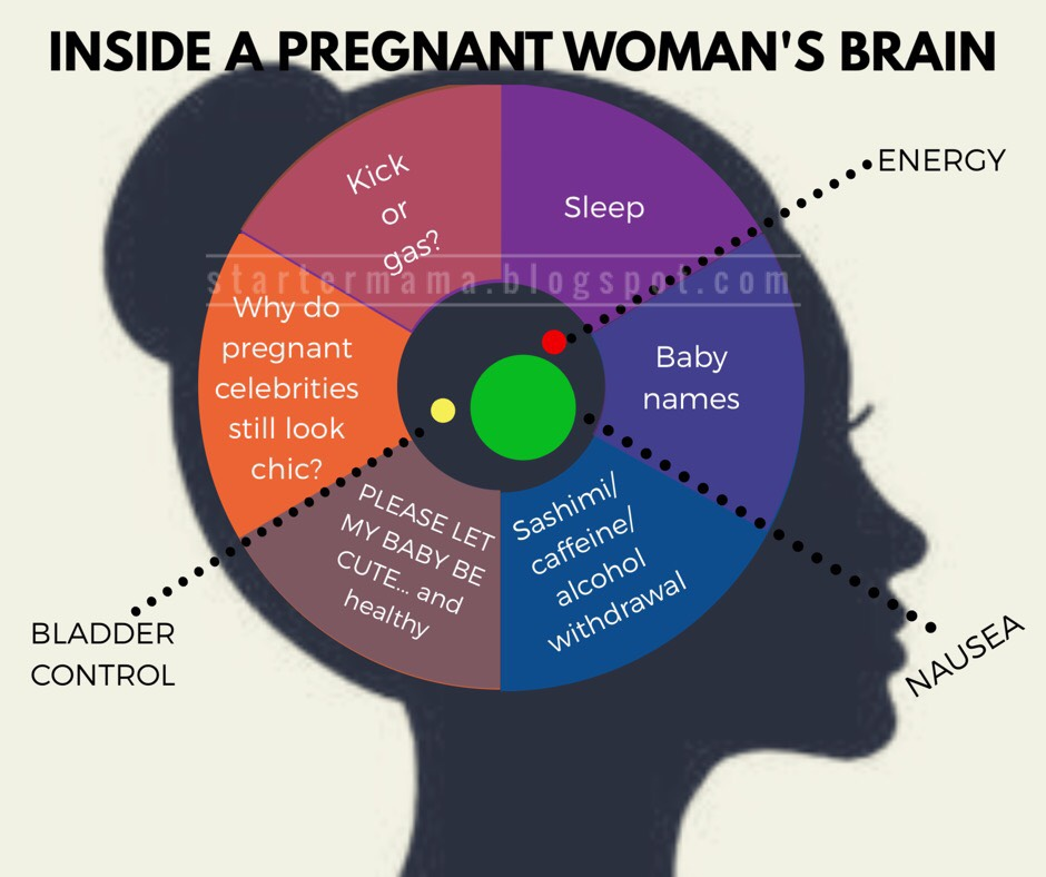 Brain Map Of A Pregnant Woman