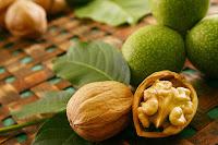 листья и орех грецкий
