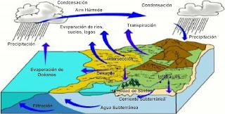 Corrientes marinas y oceánicas