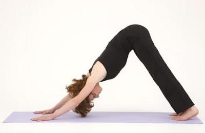 Yoga Upward and Downward Facing Dog