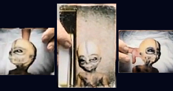 interview with an extraterrestrial essay I recount an interview with the widow and daughter of the late ufo skeptic and harvard astronomer, donald menzel, an alleged mj-12 member supporters of the mj-12 papers, including friedman, would have us believe that menzel was a secret government disinformation agent who knew all about roswell and the aliens recovered.