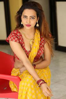 Geetha Shah Looks In Saree 34