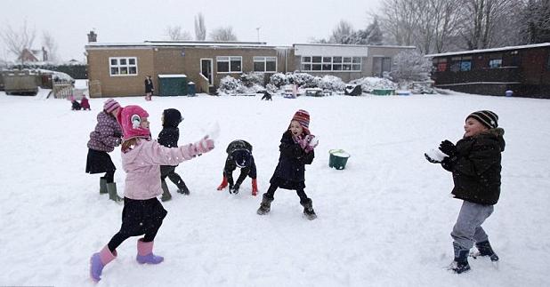 Central Community Elementary School Health Blog Prepare