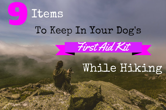 9 Items to Keep in Your Dog's First Aid Kit while Hiking