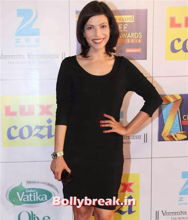 Shilpa Shukla, Zee Cine Awards 2014 Red Carpet Pics