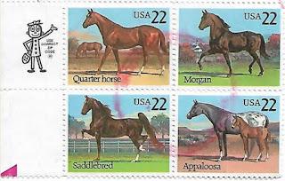 Selos com Cavalos de Corrida