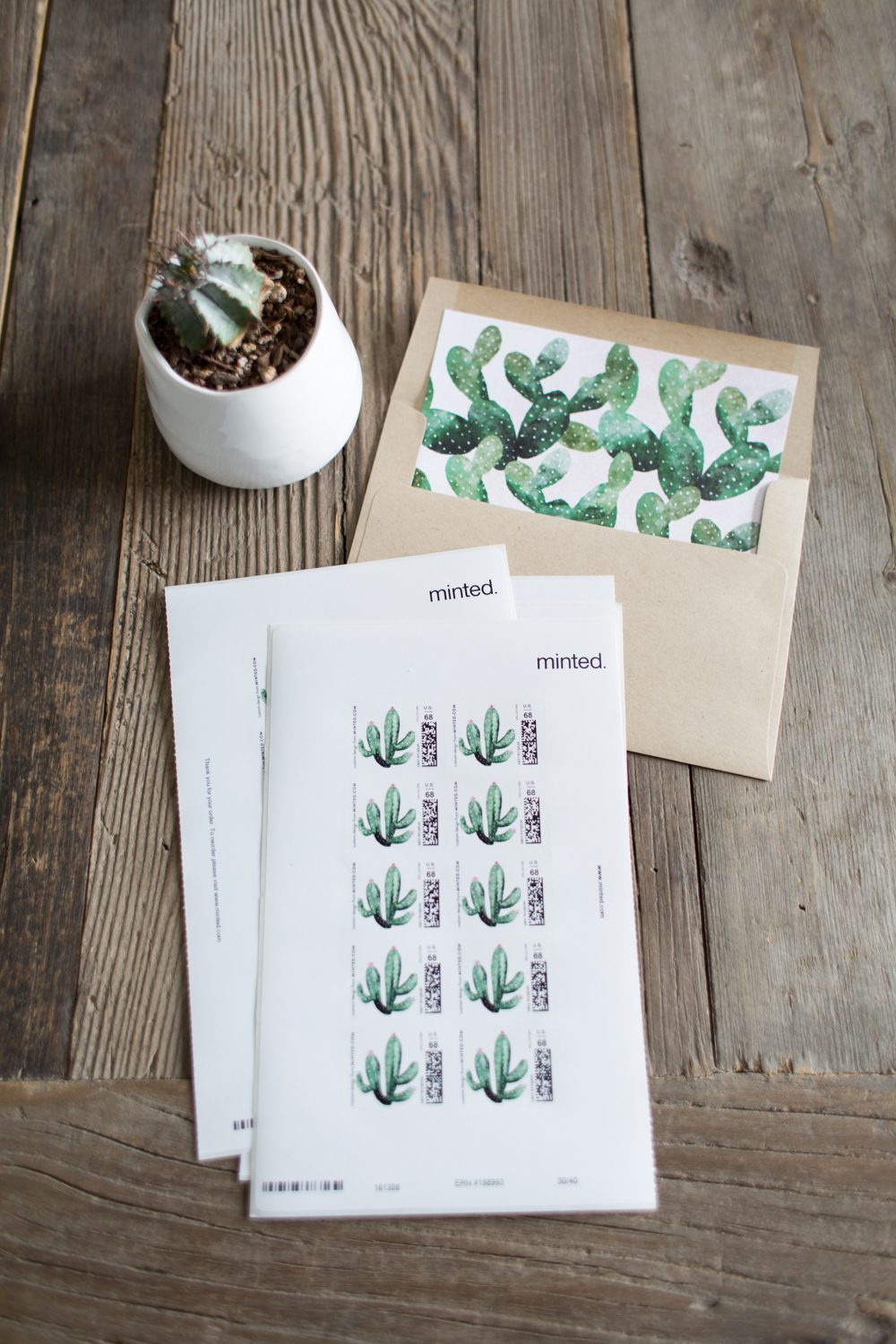 Minted Cacti Wedding Invites Review