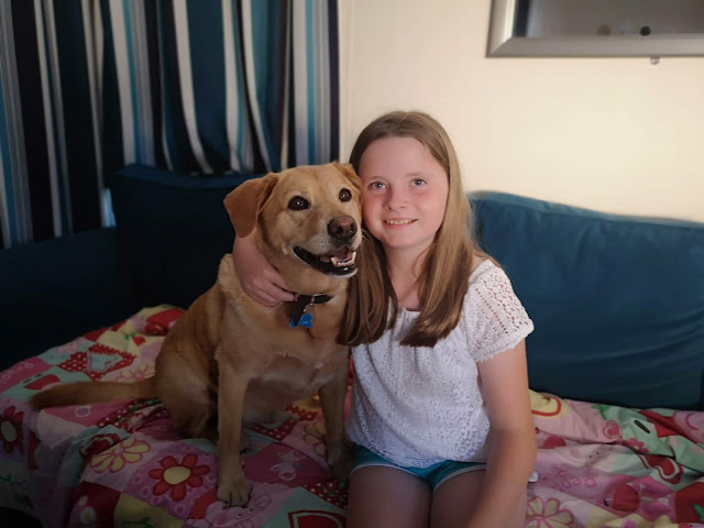Young girl cuddling a golden labrador