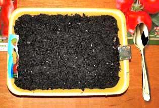 почва для рассады, как правильно вырастить рассаду