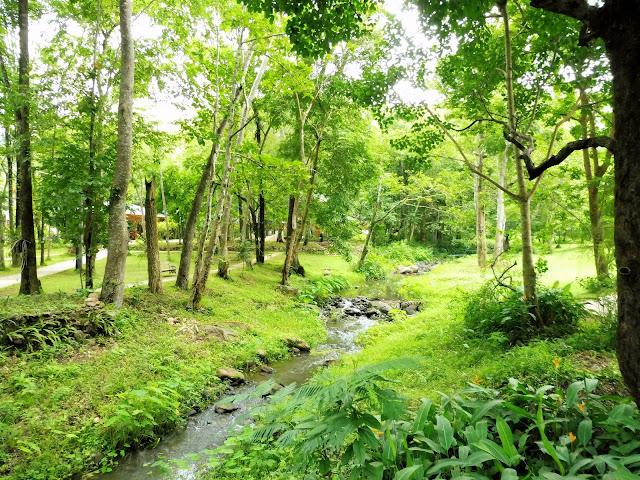 meditacion tailandia