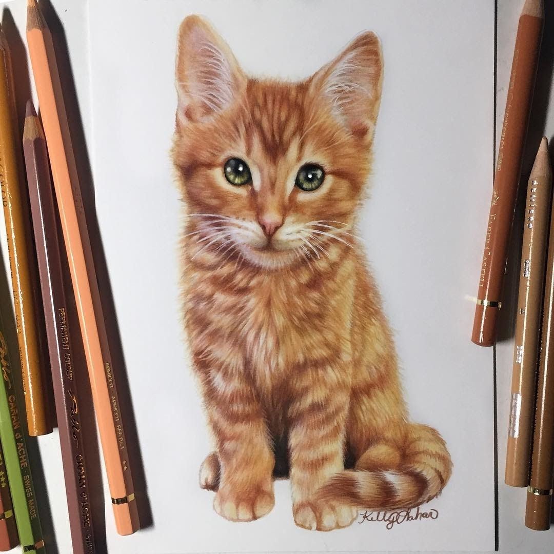 02-Ginger-Kitten-Kelly-Lahar-Our-Furry-Companions-in-Animal-Drawings-www-designstack-co