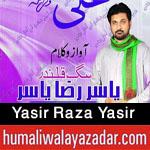 http://www.humaliwalayazadar.com/2016/05/yasir-raza-yasir-qasiday-2016.html
