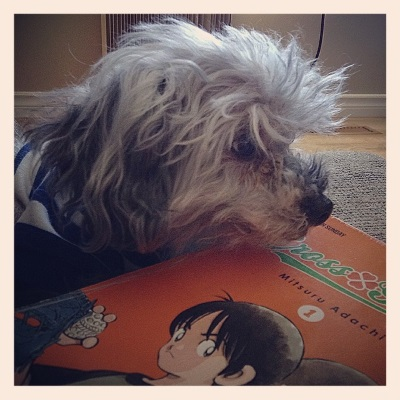 Murchie's chin hovers above a trade paperback copy of Cross Game Volume One. Its orange cover features two Japanese kids standing back to back. One of them holds a baseball.