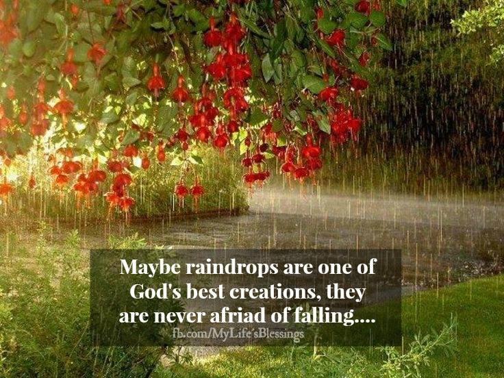 God's best creations