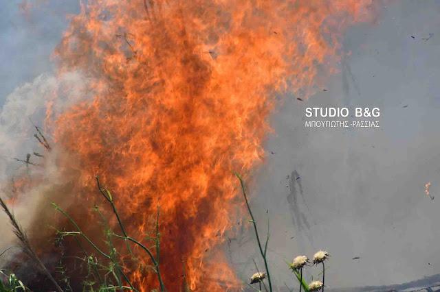 Στο κόκκινο οι πυροσβεστικές δυνάμεις λόγω κινδύνου πυρκαγιάς και στην Αργολίδα