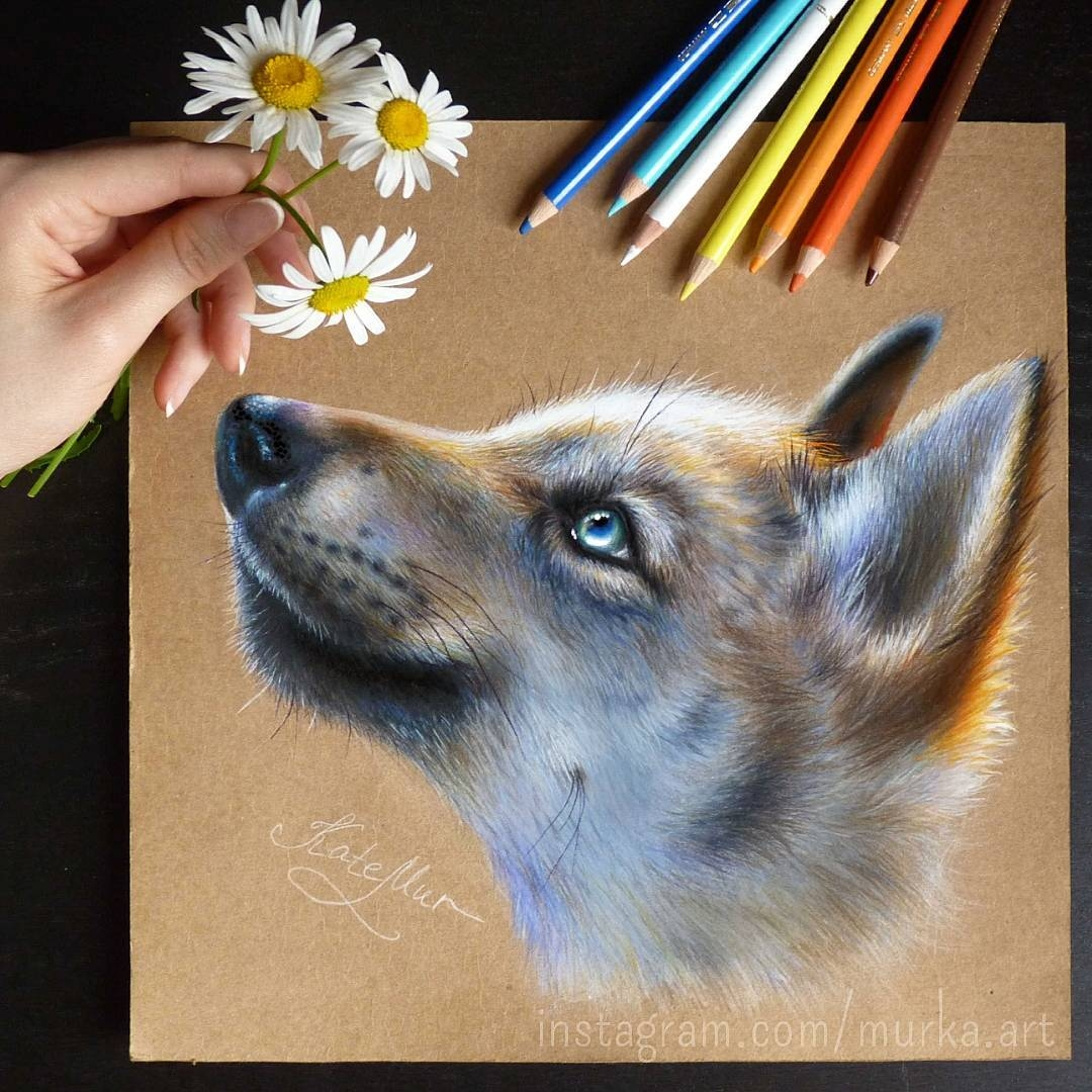 11-Wolf-Puppy-Kate-Mur-Fantasy-and-Realism-in-Paintings-and-drawings-of-animals-www-designstack-co