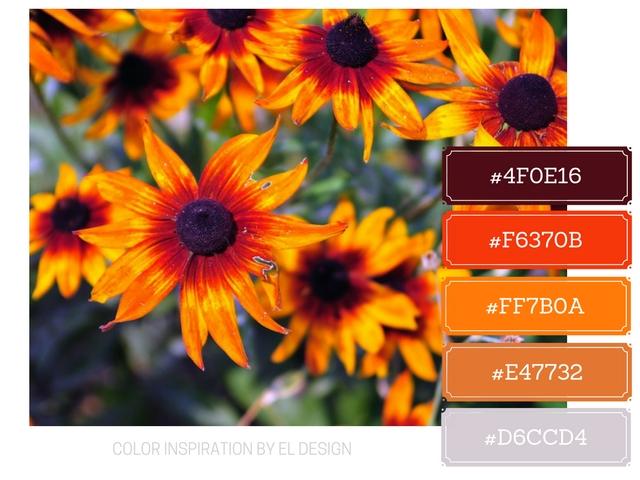 Σχεδιασμός blog με βάση το χρώμα : Πορτοκαλί