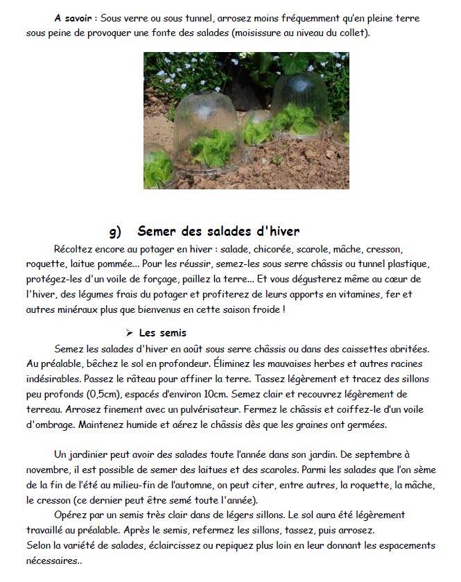 breuillet nature tout savoir sur les salades. Black Bedroom Furniture Sets. Home Design Ideas