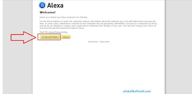 Alexa Toolbar Nasıl Kurulur - Alexa'da Yapılması Gereken Ayarlar