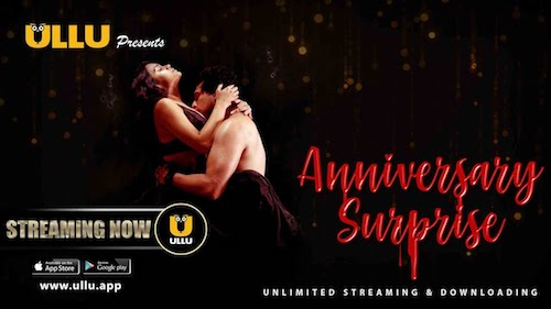 The Anniversary Surprise 2019 Hindi WEB Series Complete