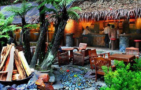 Tempat wisata kampung daun di lembang bandung