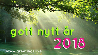 Happy New Year (English) =    gott nytt år ( Swedish )