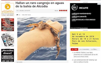 Bichos raros en las excursiones en barcos de pesca de Pescaturismo