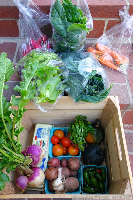image of summer farm share box with radishes, carrots, and plenty of greens