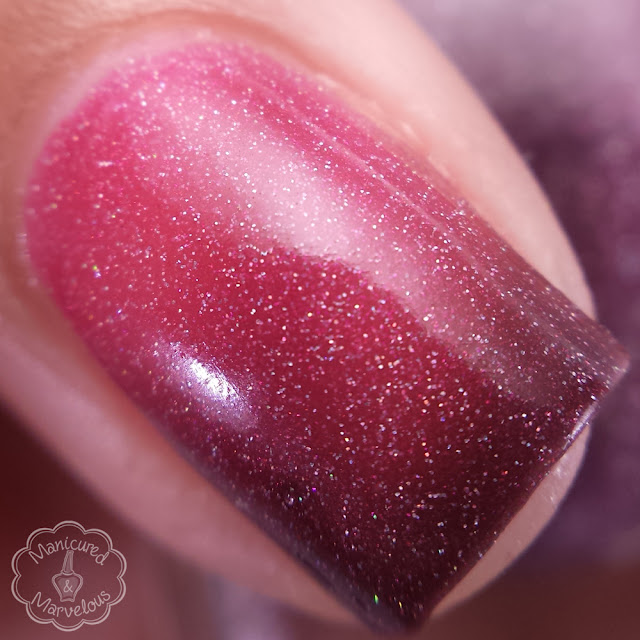 CDB Lacquer - Cranberry Delight