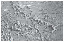 Berbagai Macam Bentuk-Bentuk Kenampakan (Relief) Permukaan Bumi di Dasar Laut
