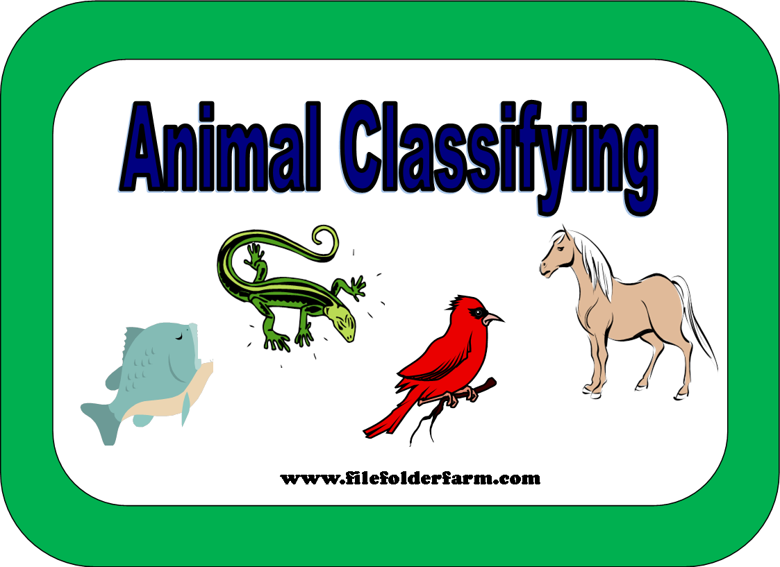 Animals And Animal Classification