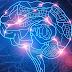 Estudio descubre que el cerebro es capaz de predecir lo que verán nuestros ojos antes de que lo veamos