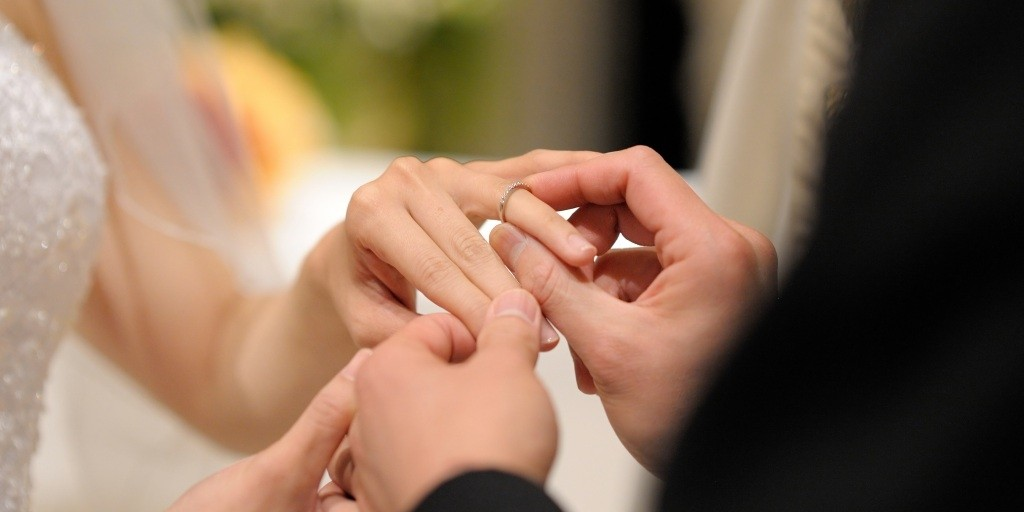 fotos anillos boda