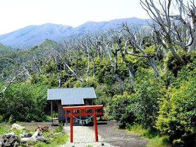 Berita Misteri - Pulau Miyakejima, Jepang
