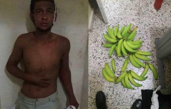 Apresan hombre por robar un racimo de plátano en Tenares