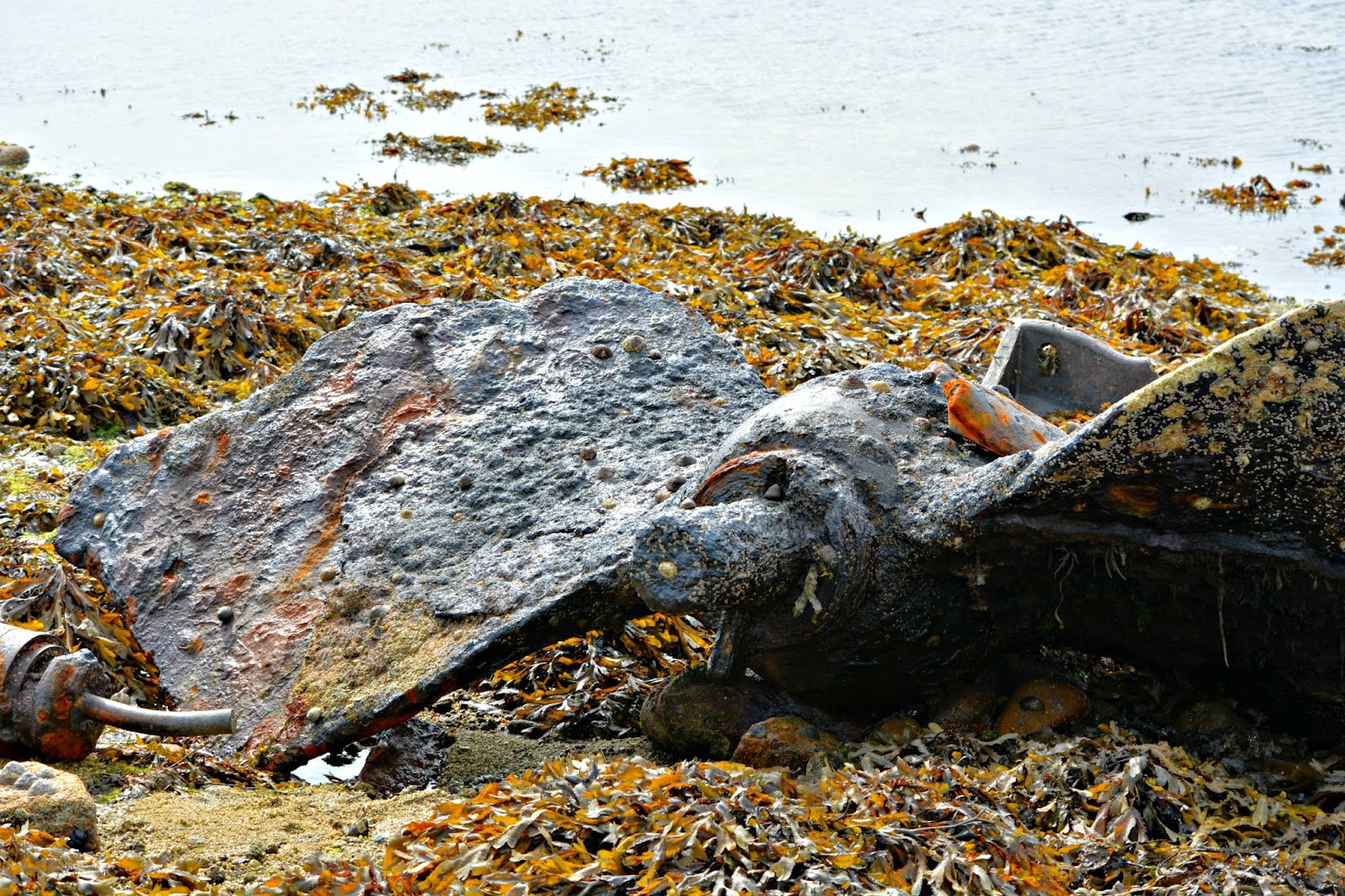 Beachcombing Bryher isles of scilly