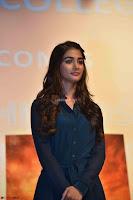 Pooja Hegde ~  Exclusive 043.jpg