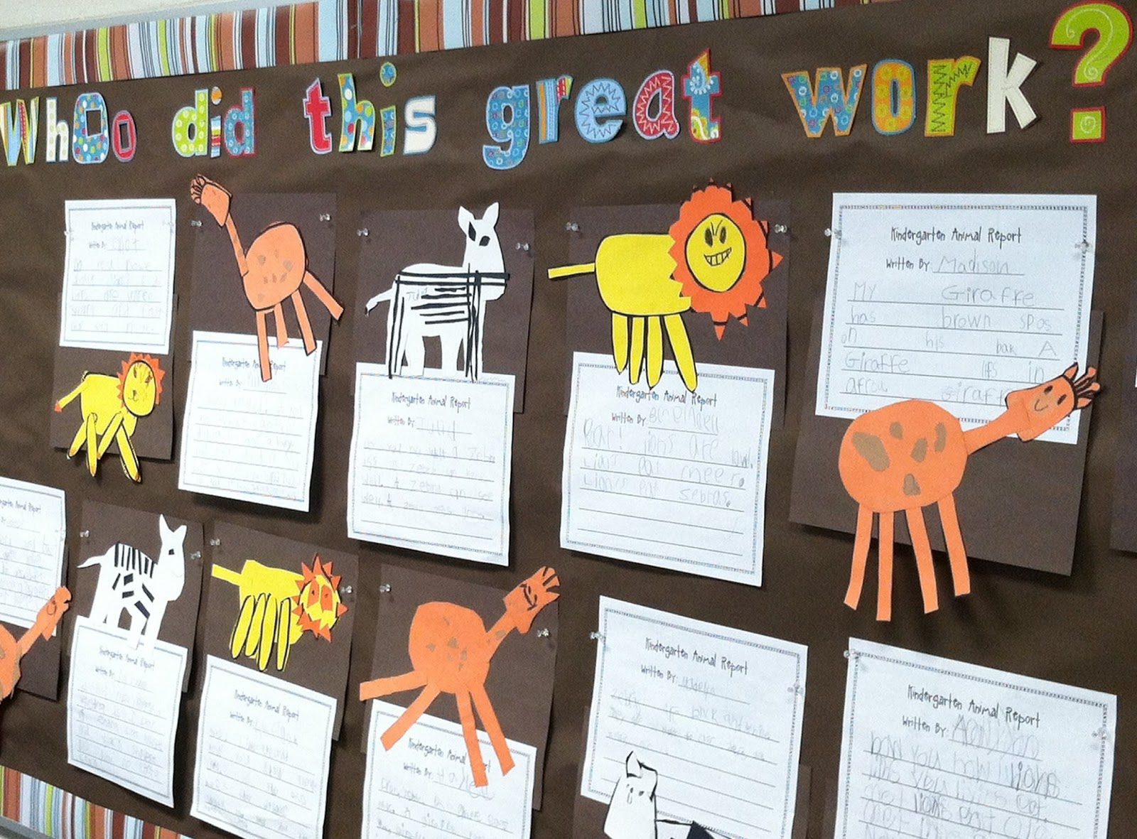 Kindergarten Is A Hoot Zoo Animal Reports