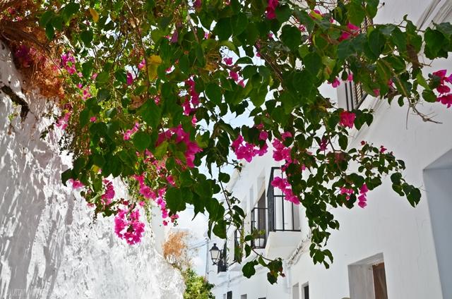 travel | andalusien reise - das weisse bergdorf FRIGILIANA | luziapimpinella.com