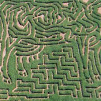 New England Fall Events_Escobar Farms Corn Maze