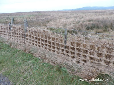 Grass Plaited Fence photo by Justbod