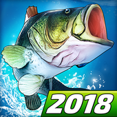 Fishing Clash: Catching Fish Game. Bass Hunting 3D APK for Android Terbaru