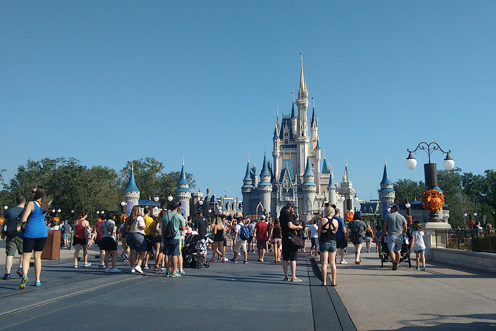 parque cheio magic kingdom
