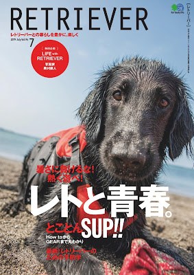 RETRIEVER(レトリーバー) 2019年07月号 zip online dl and discussion