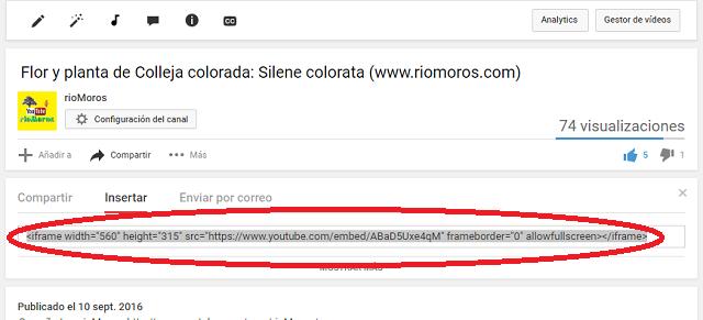 código de inserción de vídeos de Youtube