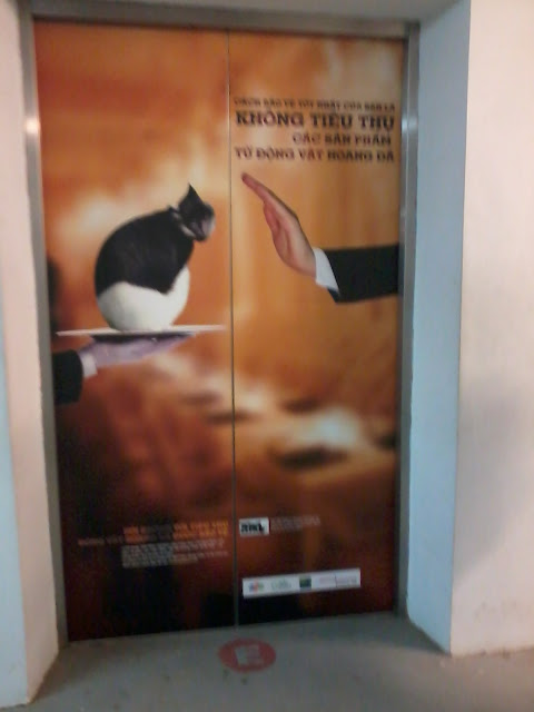 dan poster tại fpt