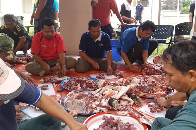 Hati-hati..Pencuri Daging Korban Zaman Ini