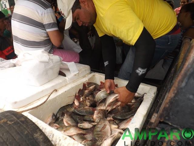 População Amparense recebe Peixes gratuitamente