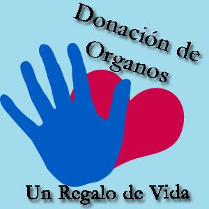Resultado de imagen para cultura de donar órganos para salvar vidas