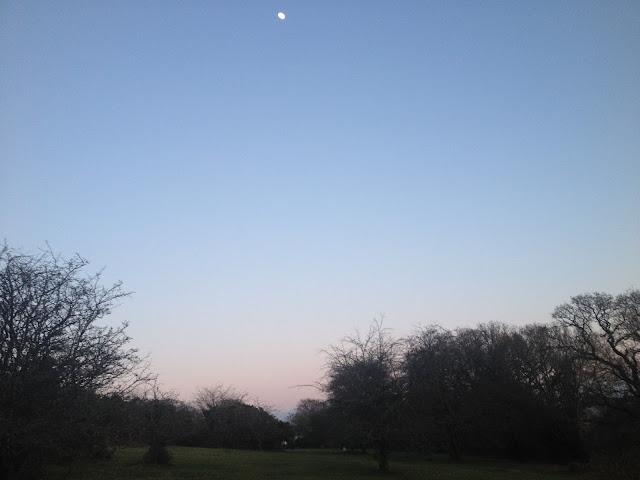 Dartmoor moon
